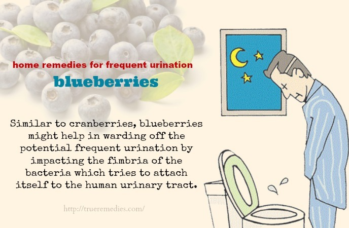 home remedies for frequent urination-blueberries