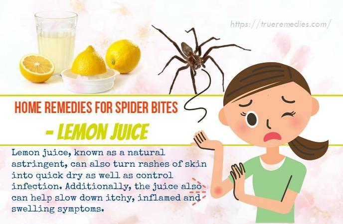 home remedies for spider bites - lemon juice