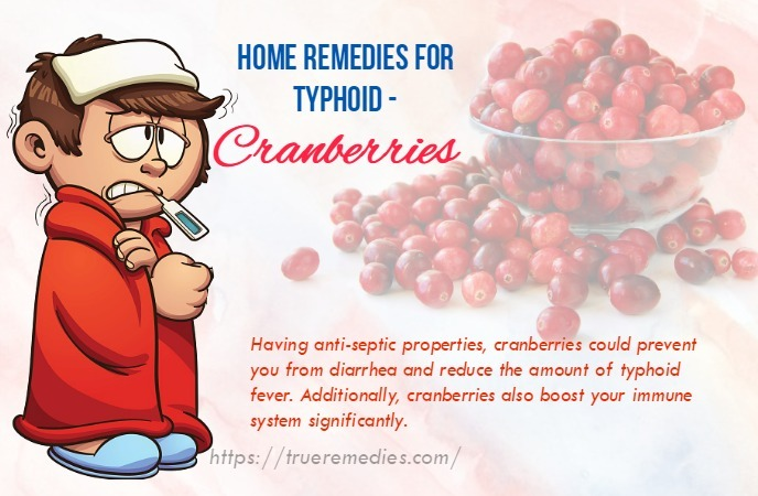 home remedies for typhoid - cranberries