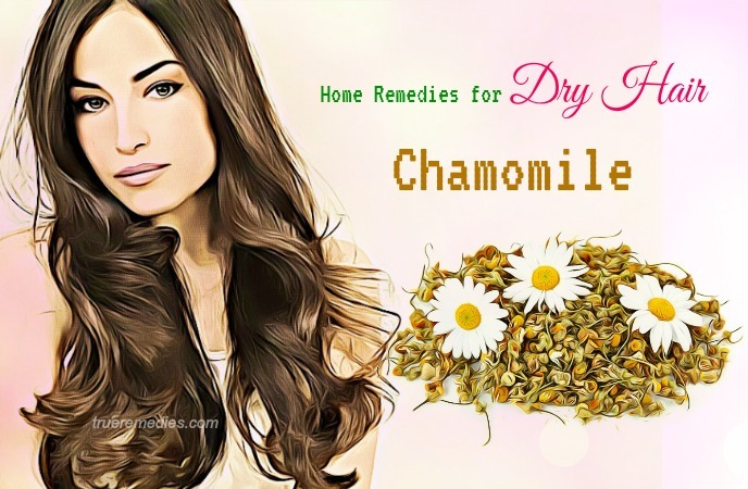 home remedies for dry hair - chamomile
