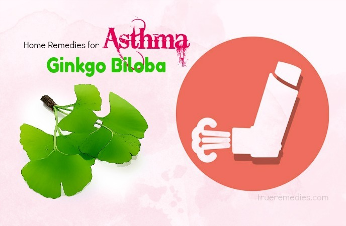 home remedies for asthma - ginkgo biloba
