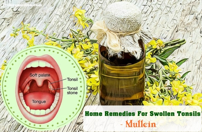 home remedies for swollen tonsils - mullein