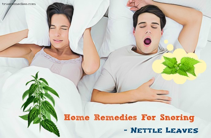 home remedies for snoring - nettle leaves