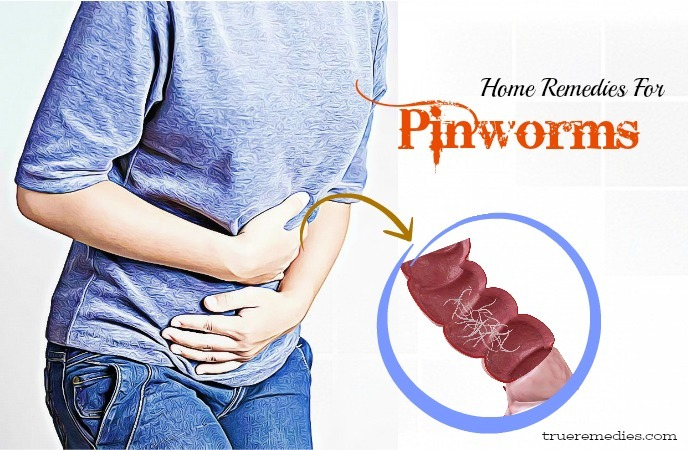 home remedies for pinworms - pathological and disease cycle