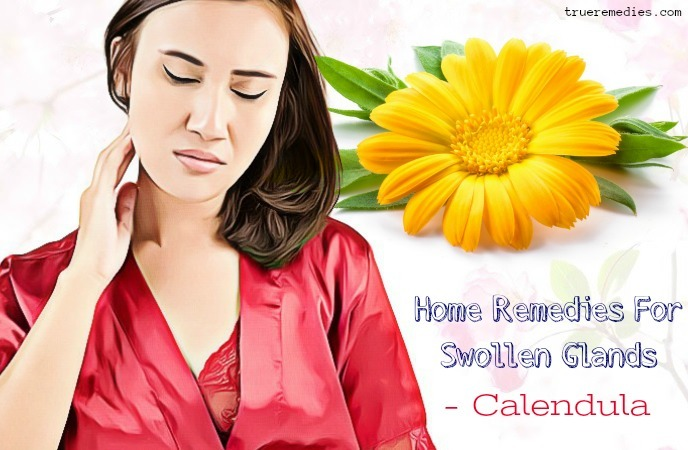 home remedies for swollen glands - calendula