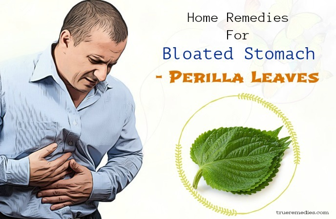 home remedies for bloated stomach - perilla leaves