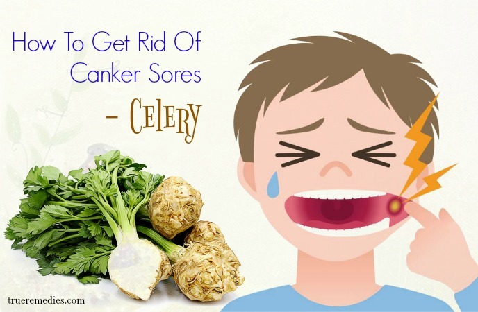 how to get rid of canker sores - celery