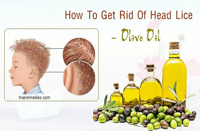 how to get rid of head lice - olive oil