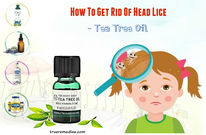 how to get rid of head lice - tea tree oil