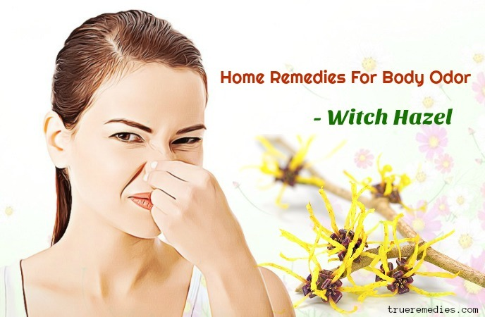 home remedies for body odor - witch hazel