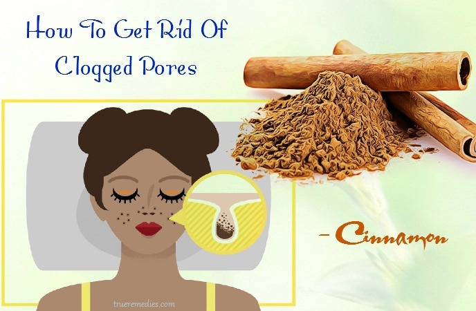 how to get rid of clogged pores on chin - cinnamon