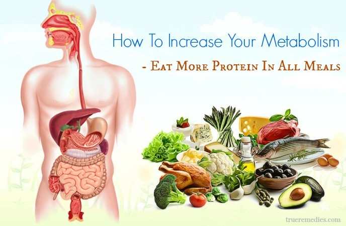 tips on how to increase your metabolism - eat more protein in all meals