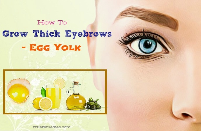 how to grow thick eyebrows naturally - egg yolk