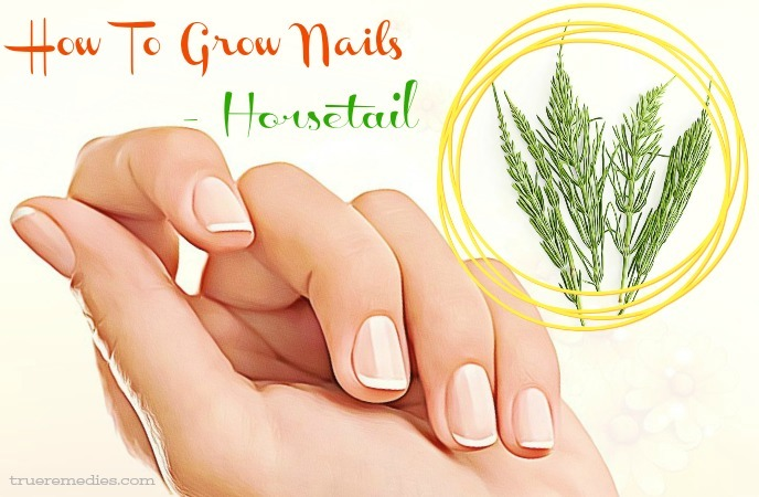 how to grow nails - horsetail