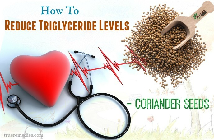 tips on how to reduce triglyceride levels - coriander seeds