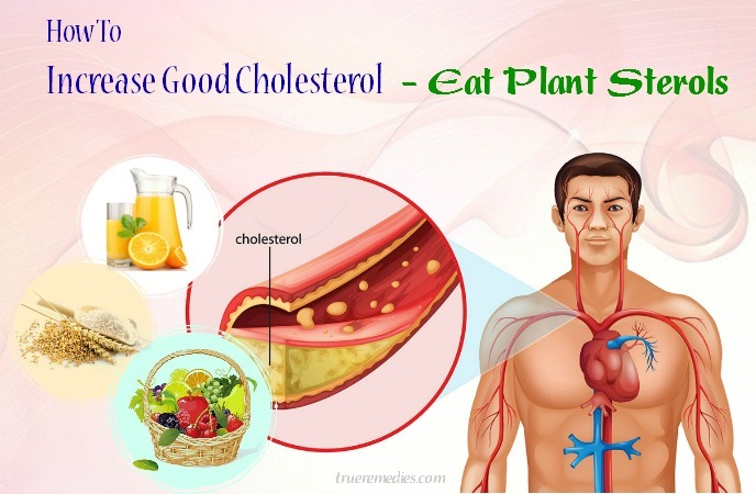 how to increase good cholesterol levels naturally - eat plant sterols
