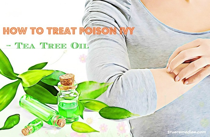 how to treat poison ivy blisters - tea tree oil