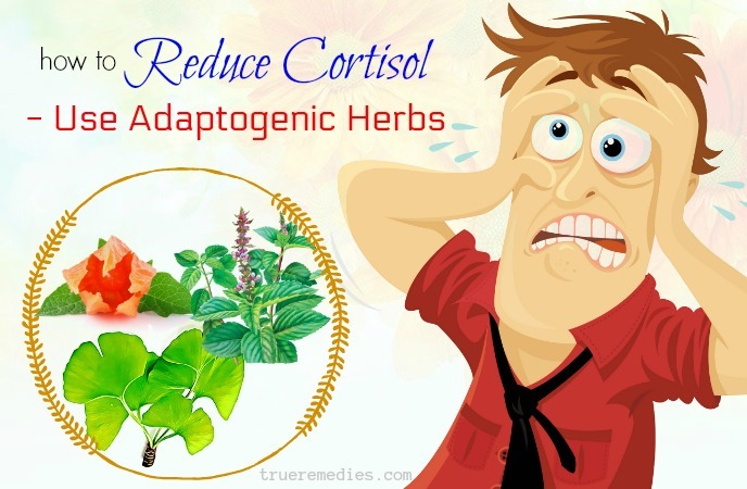 how to reduce cortisol levels - use adaptogenic herbs