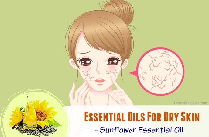 sunflower essential oil