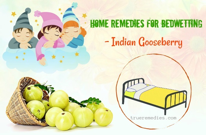 home remedies for bedwetting - indian gooseberry