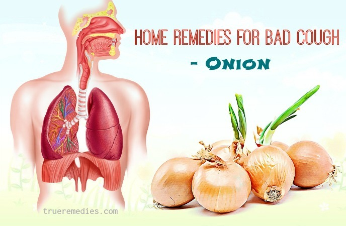 natural home remedies for bad cough - onion