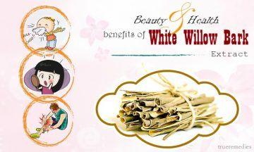 health benefits of white willow bark
