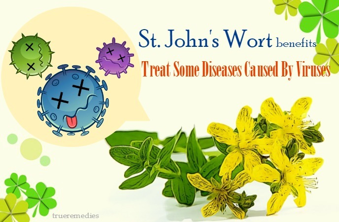 st. john's wort benefits and side effects - treat some diseases caused by viruses