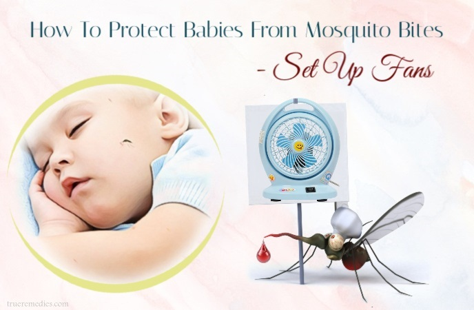 how to protect babies from mosquito bites - set up fans