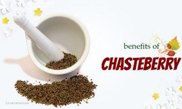 health benefits of chasteberry