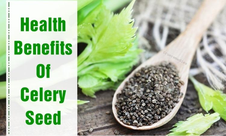 health benefits of celery seed extract